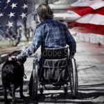 Find Veterans Services